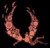Icarus Band Logo